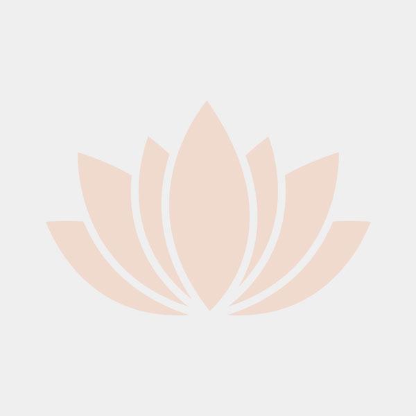 One Person Infrared Sauna Interior